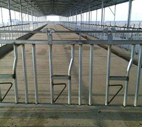 牛羊机械设备养殖